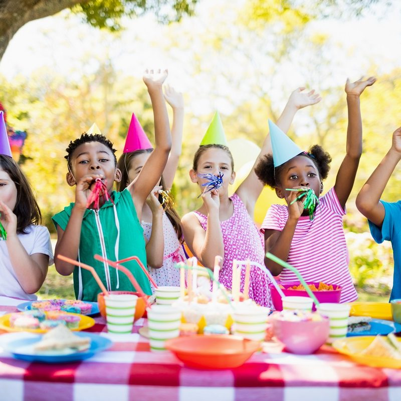 Kids Birthday Party at the Park